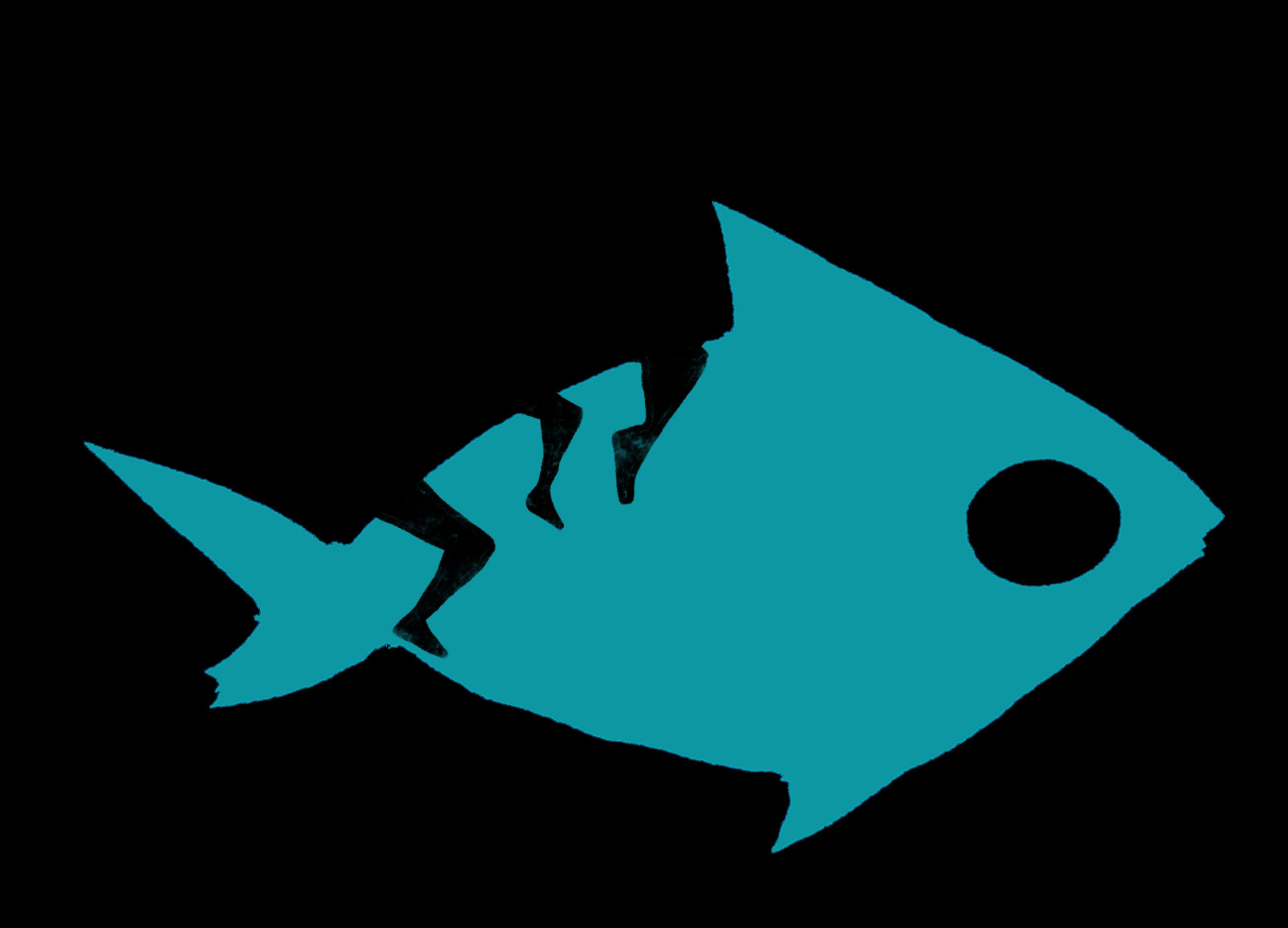 Le poisson sans bicyclette